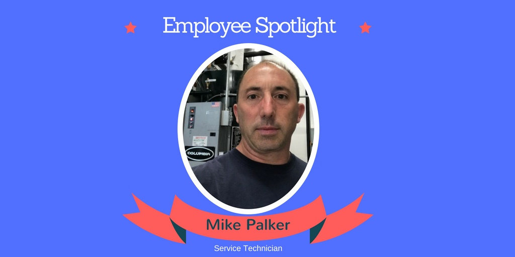 employee spotlight 2